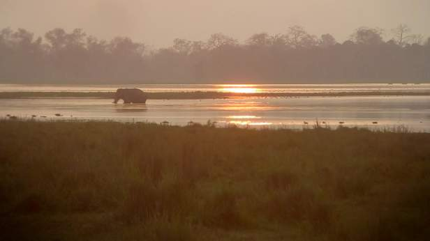 @Eastern range, Kaziranga